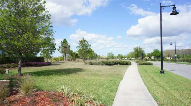 Como es el Area de Lake Nona en Orlando
