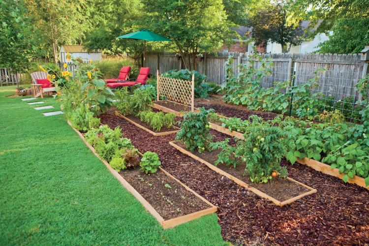 Casas autosustentables y sus beneficios al medio ambiente.
